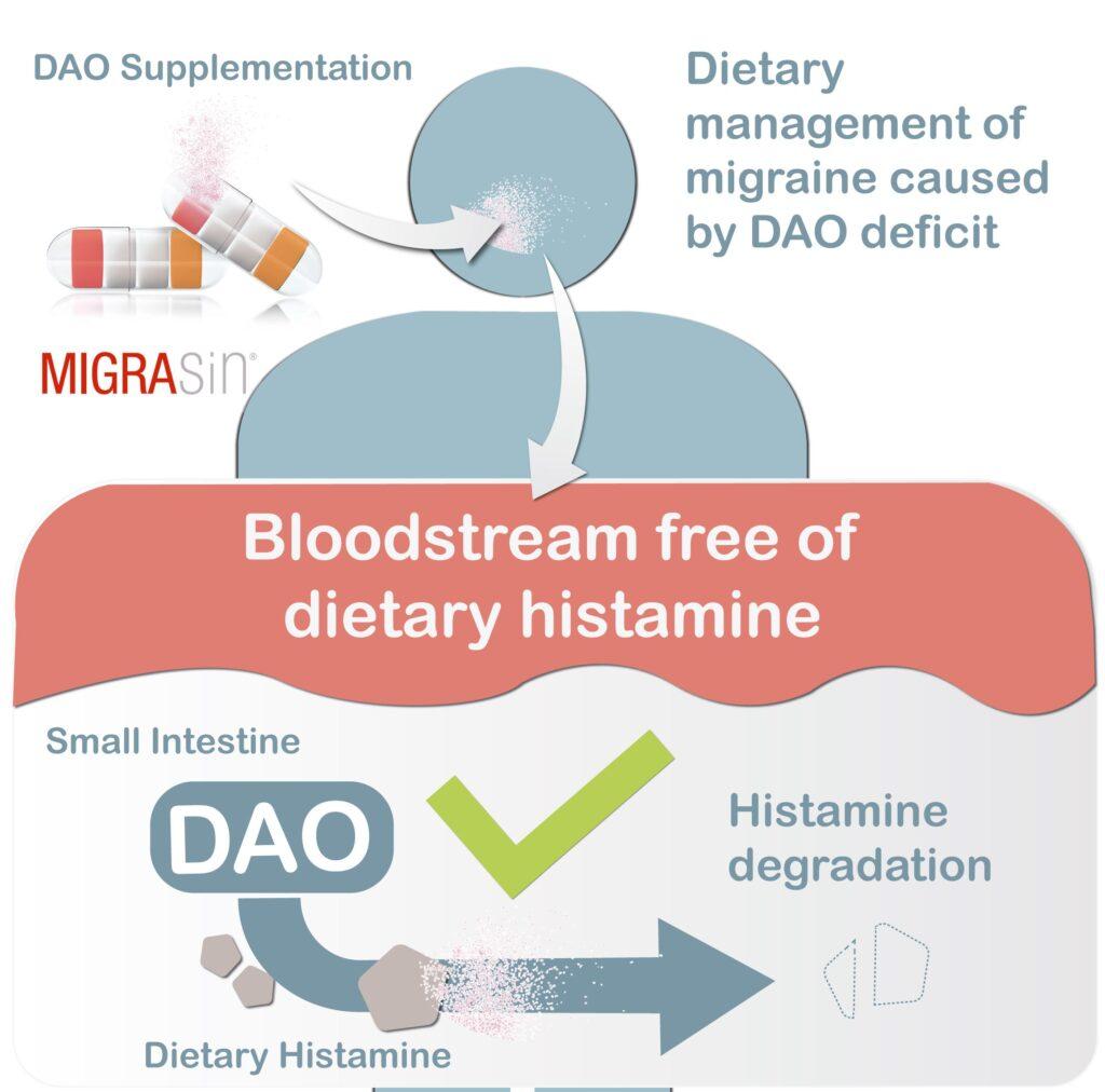 Migrasin, dao, diamino oxidase, enzyme, migraine, headache, tinnitus, tinnitus, DAO deficiency, histamine