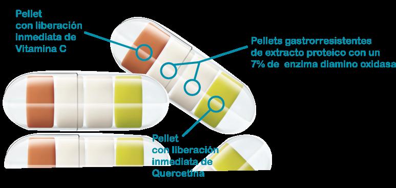 DAOfood Plus cápsulas inteligentes con micropellets gastrorresistentes de liberación de Diamino oxidasa DAO en el intestino, histamina, intolerancia