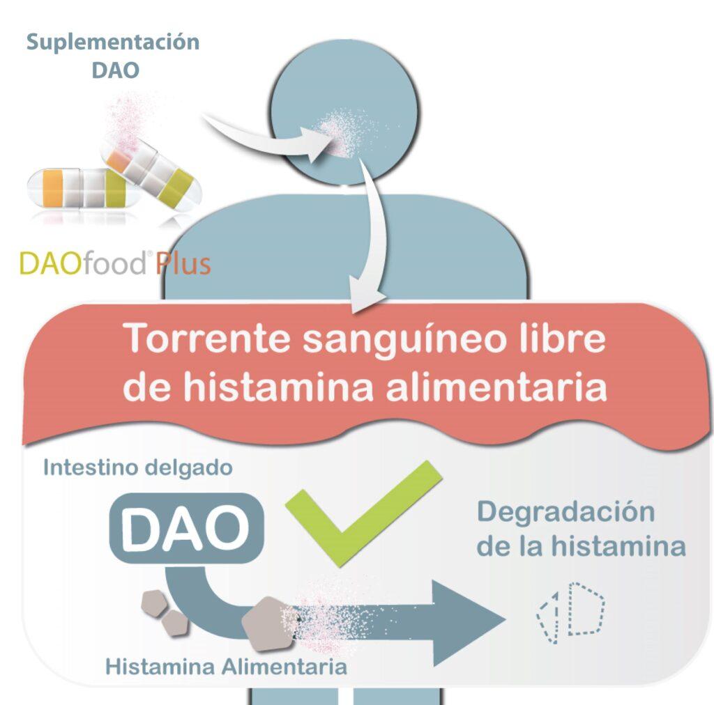 DAOfood Plus, histamina, dao, diamino oxidasa, intestino irritable, déficit de DAO, EFICAPS, flatulencia, vomitos, dermatitis, piel seca, piel atópica, diarrea, extreñimiento